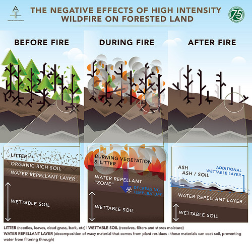 wildfire-affects-water
